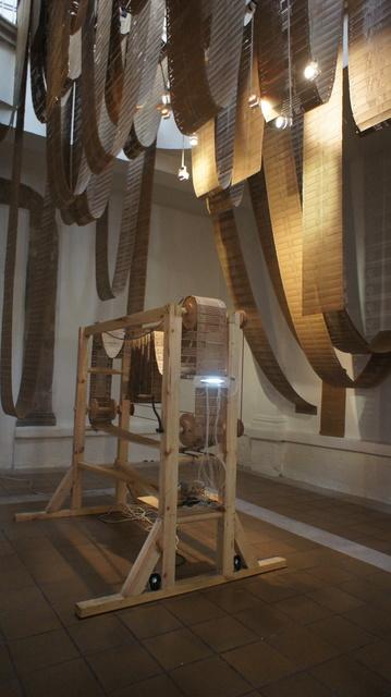 , 'Telar,' 2011-2014, Instituto de Visión
