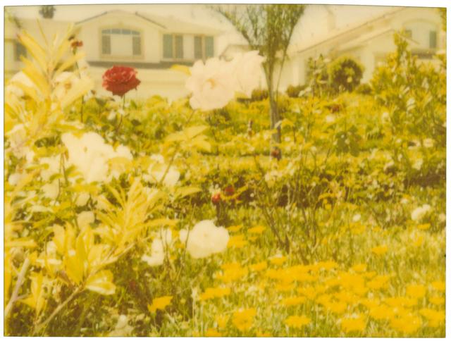 , 'Neighborhood Garden,' 2004, Instantdreams