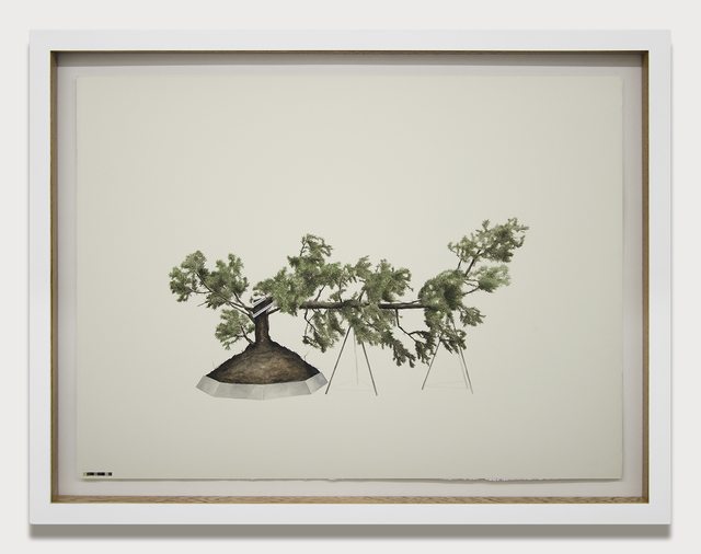 Edwin Monsalve, 'Prototipos para una naturaleza rehabilitada', 2014, Drawing, Collage or other Work on Paper, Watercolor, Fabriano paper, wood and glass, Galeria El Museo