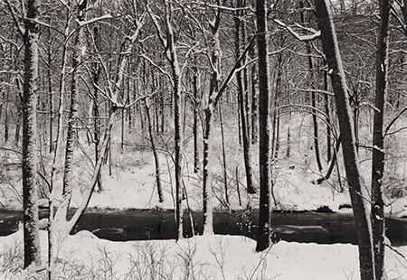 , 'Winter Woods, Redding, CT,' 1972, Pucker Gallery