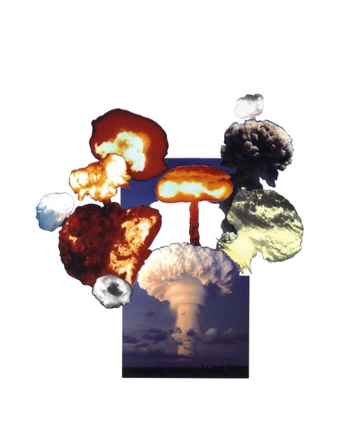 , 'Plant Life of the Pacific World: uncatalogued species: 3,' 2011, narrative projects