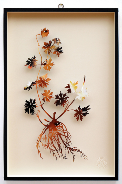 , 'You Can Learn a Lot of Things From the Flowers - Plant LXII,' 2014, Less is More Projects
