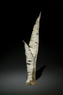 Paper Birch Vase