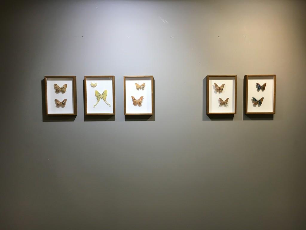 Akihiro Higuchi - Exhibition View