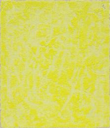 Porosity (Yellow Tablet)