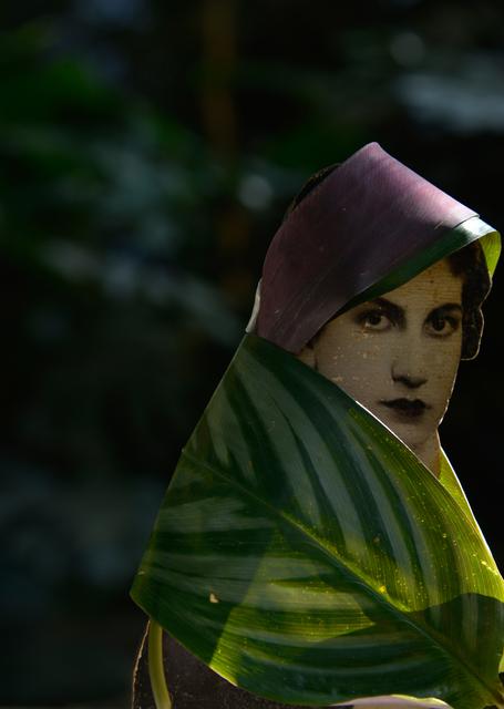 , 'Série Passageiros,' 2014, Anita Schwartz Galeria de Arte