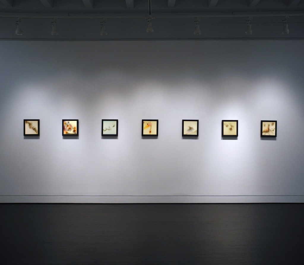 Rockne Krebs: The Smoke Drawings, March 19, 2016 - April 30, 2016, HEMPHILL Fine Arts, Washington DC