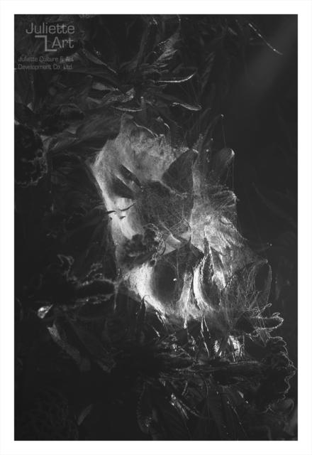 , 'The Light of Dark Night No.11,' 2013, Juliette Culture and Art Development Co. Ltd.