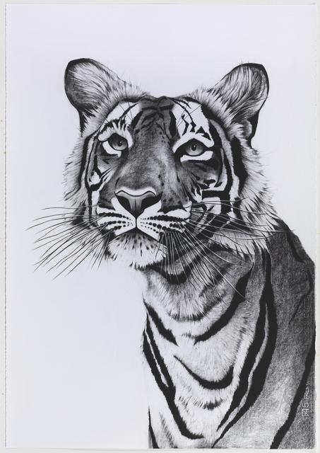 , 'Tiger Portrait Posing,' , Sladmore