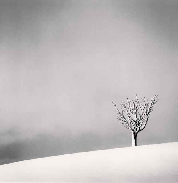 , 'Snowfall, Numakawa, Hokkaido, Japan,' 2004, Robert Mann Gallery