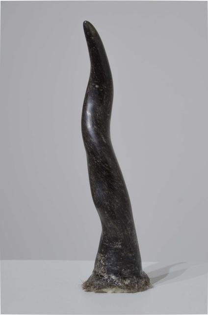 , 'Horn,' 2015, Hosfelt Gallery