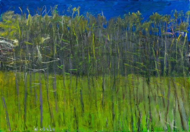 , 'LANDSCAPE IN A MINOR KEY,' 2010, Jerald Melberg Gallery