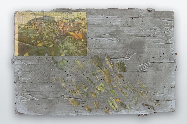 , 'Slab #56 (fishes),' 2014, Athena Contemporânea