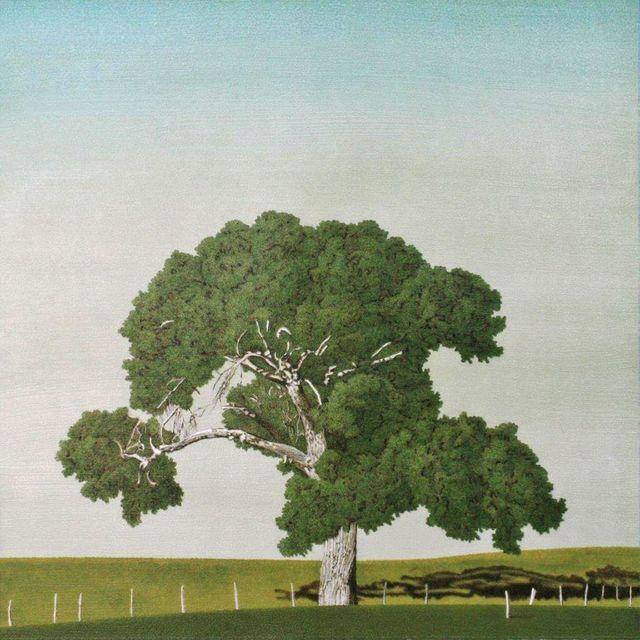 Clay Wagstaff, 'Cottonwood No. 7', 2015, Sears-Peyton Gallery