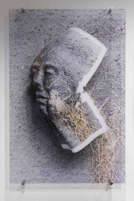 , 'Paja (Grass),' 2018, Galería Petrus