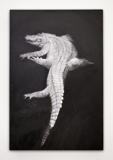 , 'The Albino Alligator,' 2016, Athena Contemporânea
