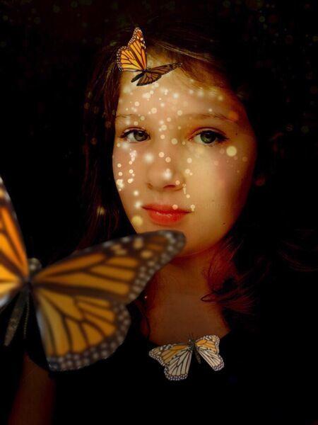 , 'Butterflies & Light,' 2015, Ricco/Maresca Gallery