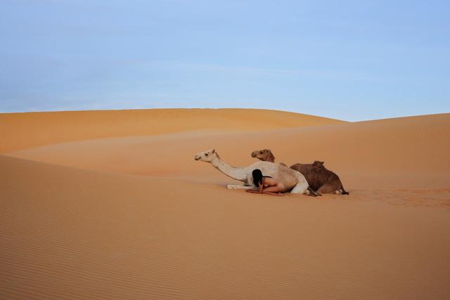 , 'Sahel, Mali, Sahara,' 2012, Waterhouse & Dodd