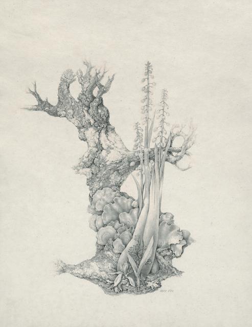 , 'Grape Hyacinths and Fungi,' 1956, Francis M. Naumann Fine Art