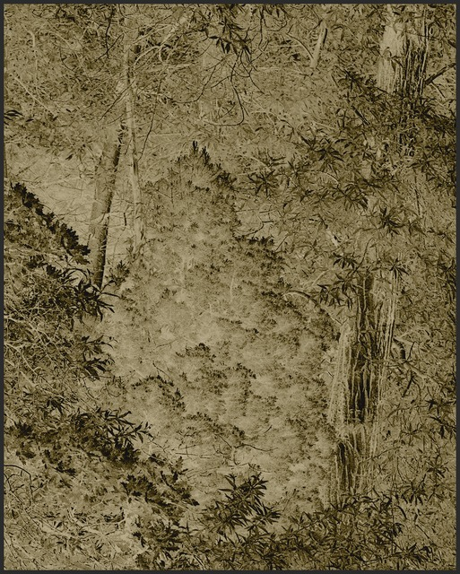 , 'Harmonium VI,' 2007, MASS MoCA