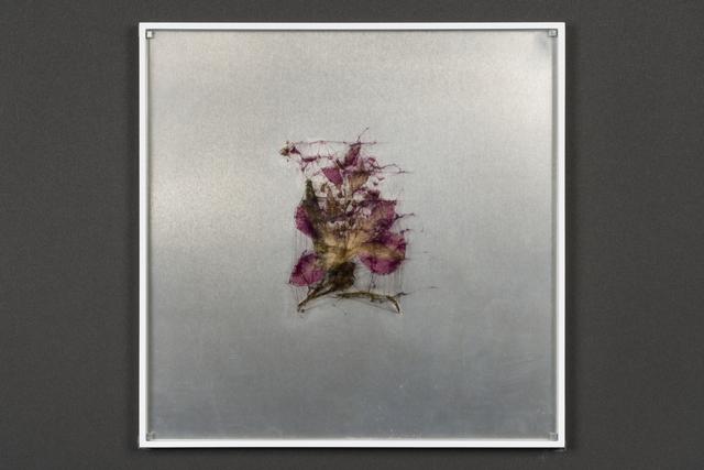 , 'elmentum #9,' 2018, Takuro Someya Contemporary Art