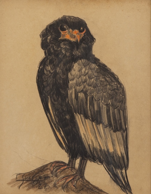 , 'Martial eagle,' , Galerie Dumonteil
