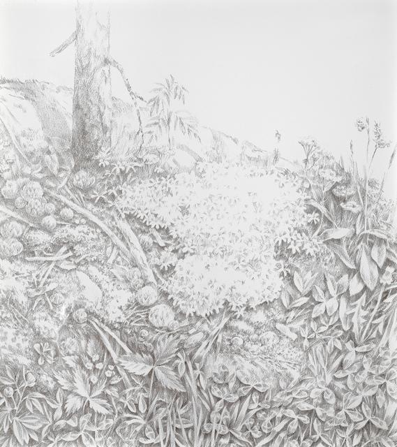 , 'Rock in the Backyard,' 2012, Galerie Anhava