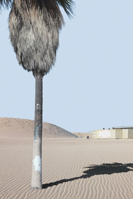 , 'Landscape with Palm Tree,'  2012, Robert Berman Gallery