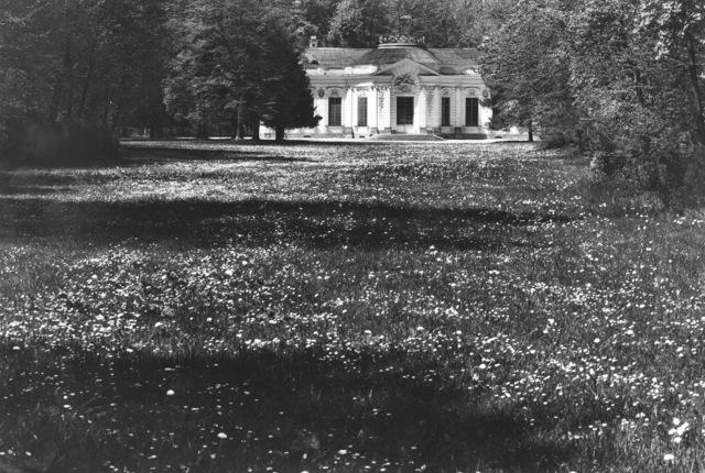 , 'Ohne Titel (Gartenanlagen zu Nym- phenburg),' 1974-1988, Museum für Fotografie