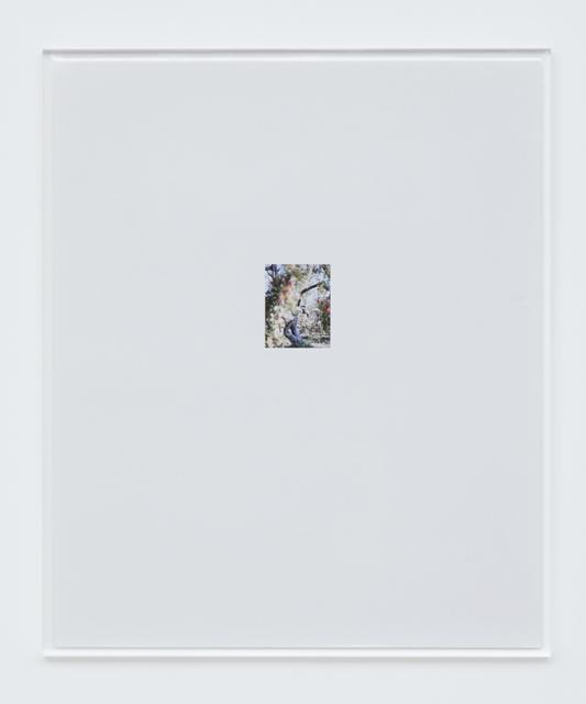 , 'Apple Tree 5,' 2017, Tomio Koyama Gallery