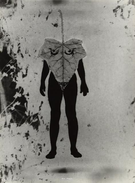 , 'Ohne Titel (Naturgeschichte) / Untitled (Natural History) ,' 1975, Galerie Hubert Winter