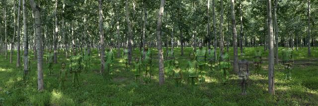 , 'Forest,' 2013, Galería RGR