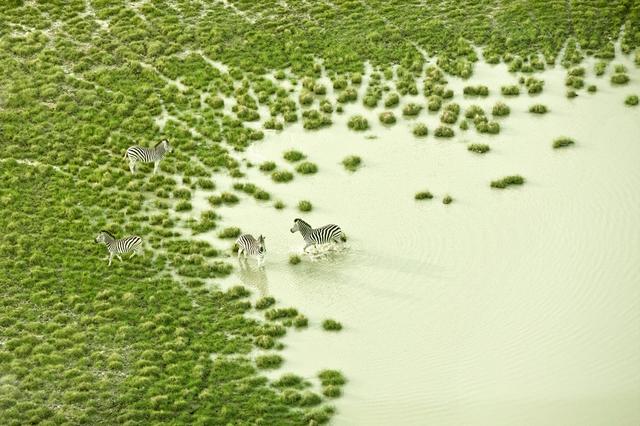 , 'Botswana Bath,' 2009, ClampArt