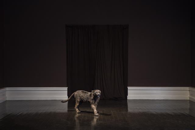, 'Black Nationalism ,' 2016, Den Frie Centre of Contemporary Art