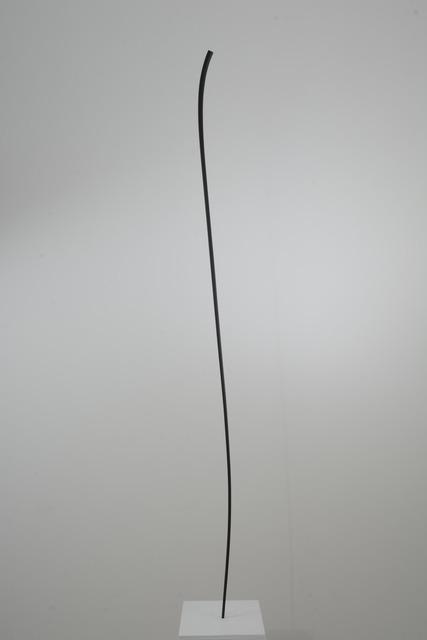 , 'Sovrana,' 2015, rosenfeld porcini