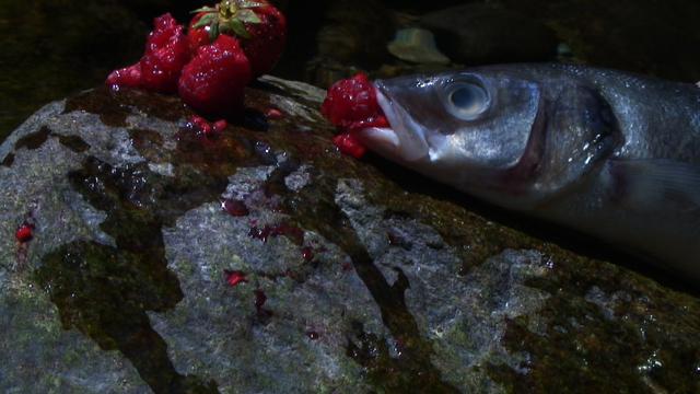, 'Swallow,' 2013, Collezione Maramotti