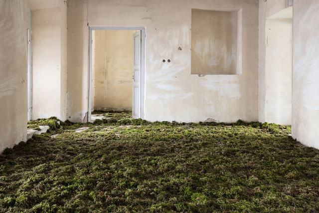 , 'Home 2,' 2017, Robert Klein Gallery