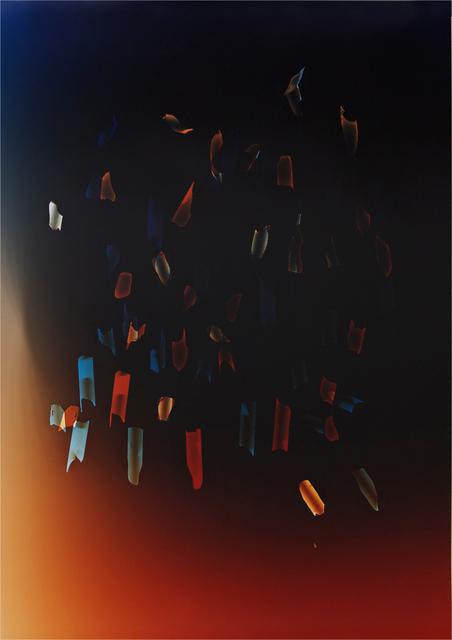 Tatiana Echeverri Fernandez, 'Sad lone scorpions can't get a path', 2013, Gallery Weekend Berlin