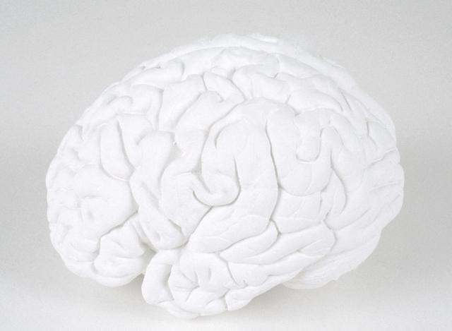 Katharina Fritsch, 'Gehirn (Brain)', 1987-1989, Sculpture, Plaster, paint, Matthew Marks Gallery