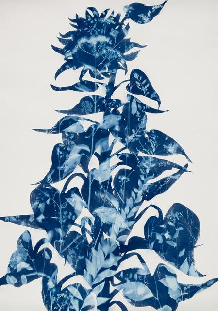 , 'American Giant,' 2018, Elisa Contemporary