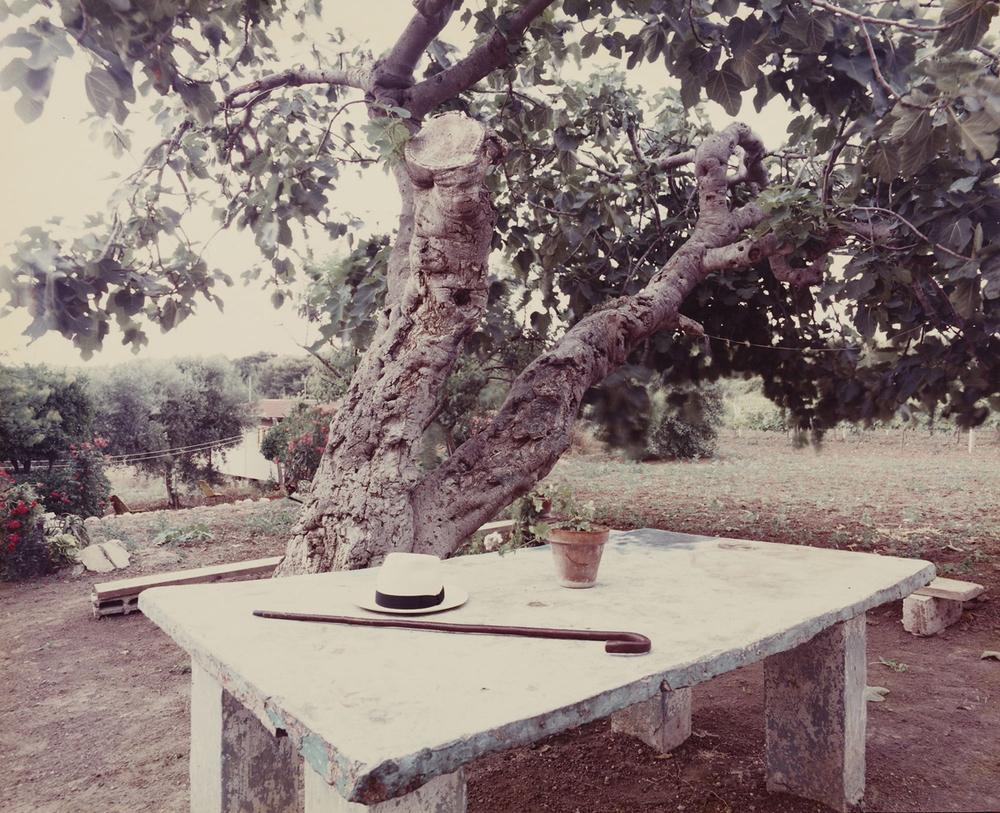 "Isole Tremiti,1985 - da "" Paesaggio Italiano"" Ink jet print"