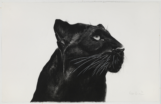 , 'Black Panther Looking Away,' , Sladmore Contemporary