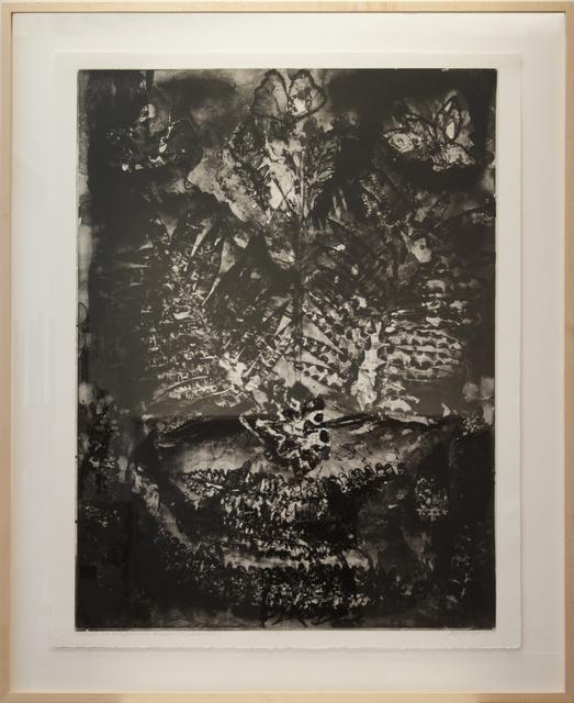 , 'Motifs From ISU Greenhouse (Selections I & II in Combination),' , Main Street Arts