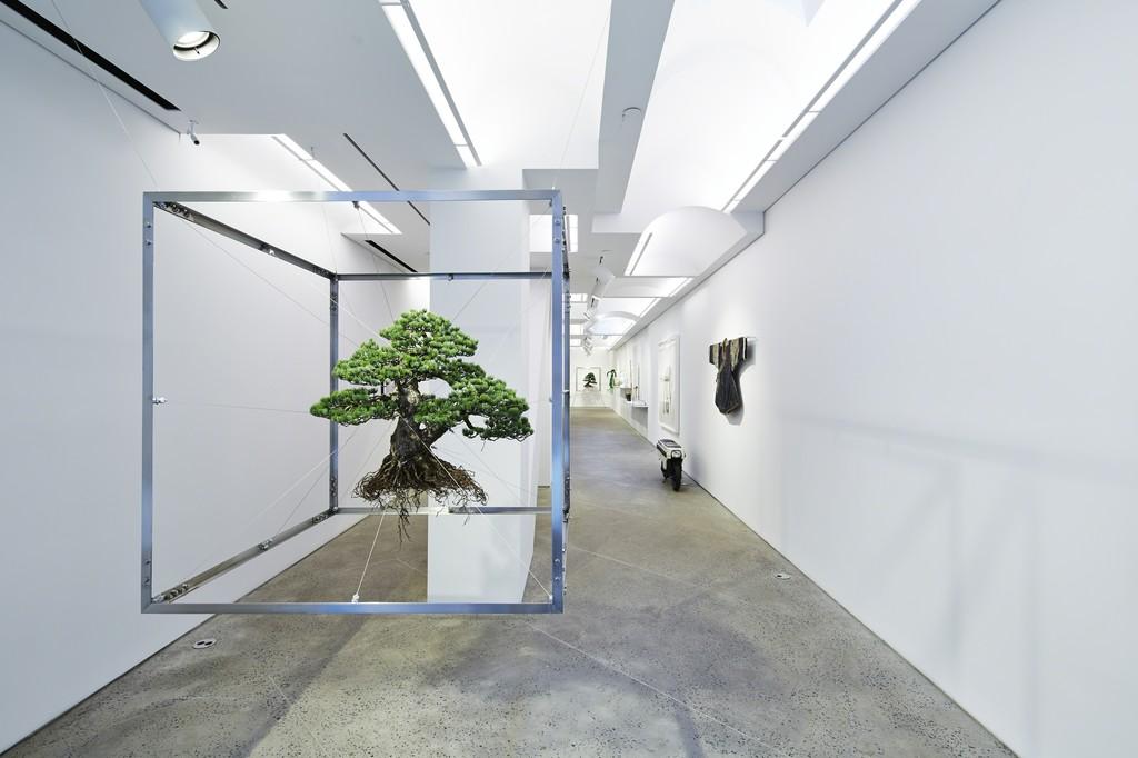 Installation view. Photos by Shiinoki Shunsuke.