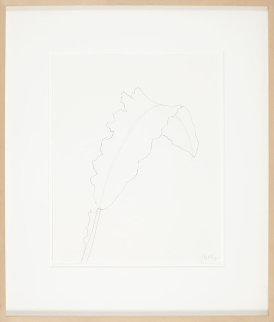 , 'Leaf,' 1999, Anthony Meier Fine Arts