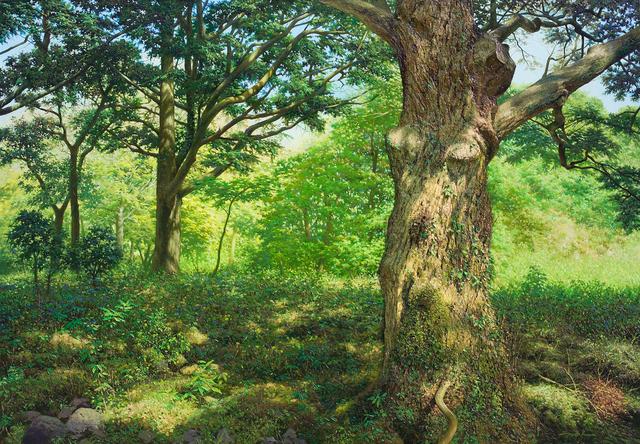 , 'No78 Silent Woods,' 2014, Galerie Bhak