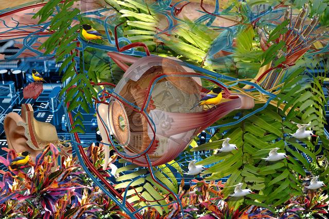 , 'El ojo de Dios (Eye of God),' 2015, Koplin Del Rio