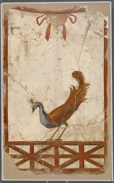 'Wall Fragment with a Peacock',  about 70, J. Paul Getty Museum
