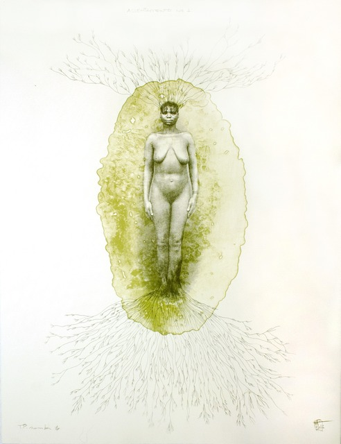 , 'Assentemento #1,' 2012, Tamarind Institute