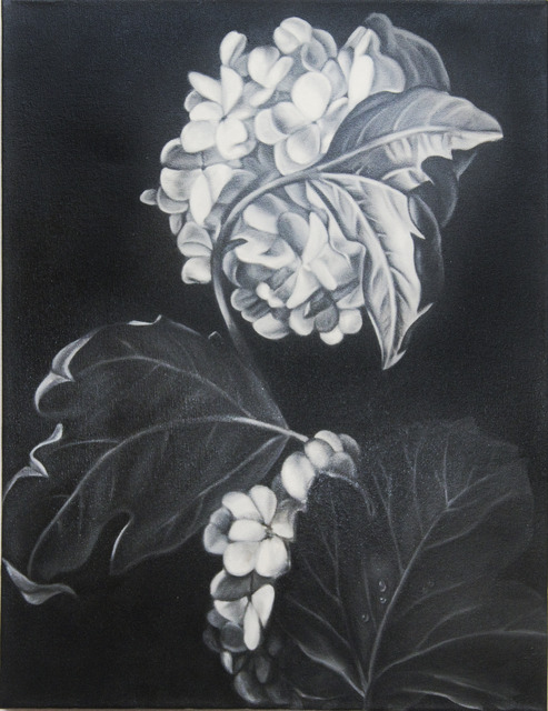 , 'Hydrangea (after Rachel Ruysch),' 2010, Clark Gallery